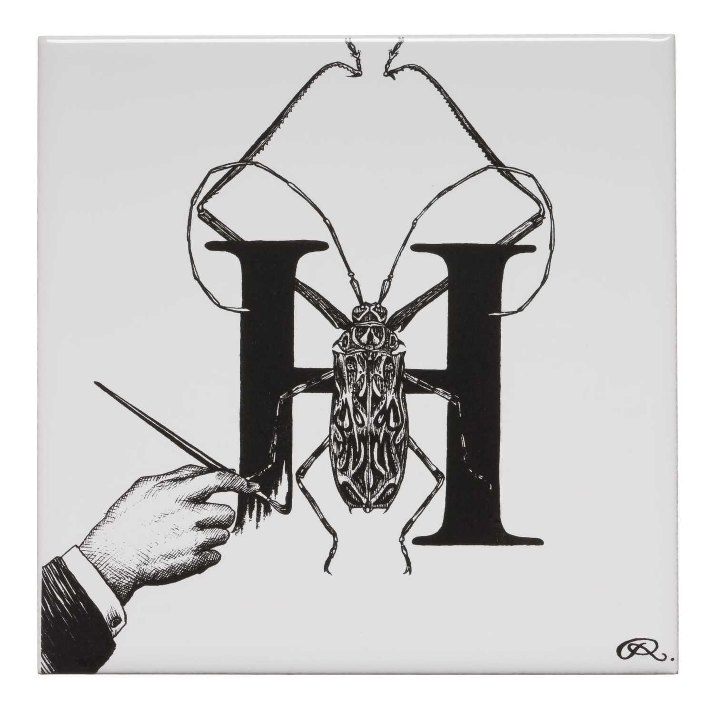 H - Handrawn Harlequin Beetle Tile-0