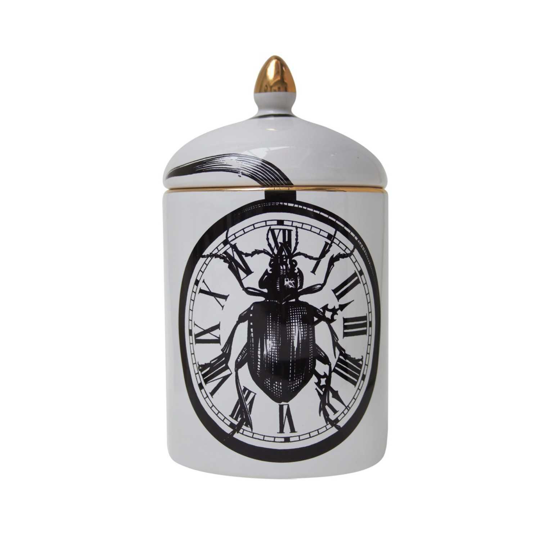 Beetleclock Popitin Pot-0