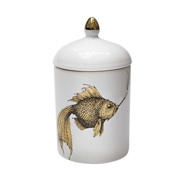 Gold Fish Popitin Pot-0