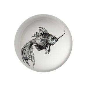 Smokey Fish Paperweight Domed -0