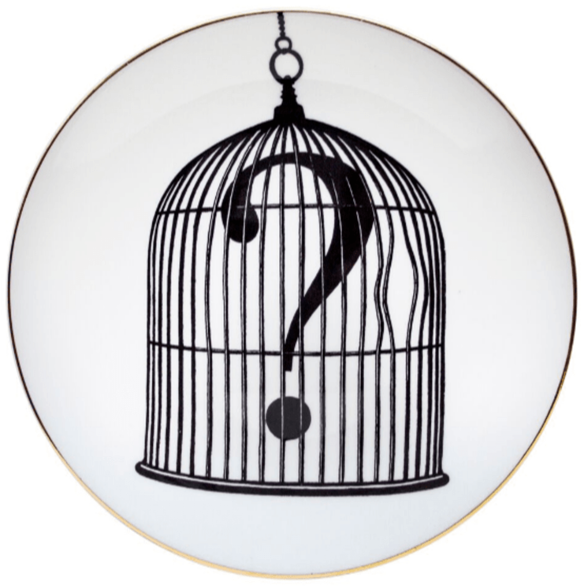 Question Mark Birdcage Plate-0