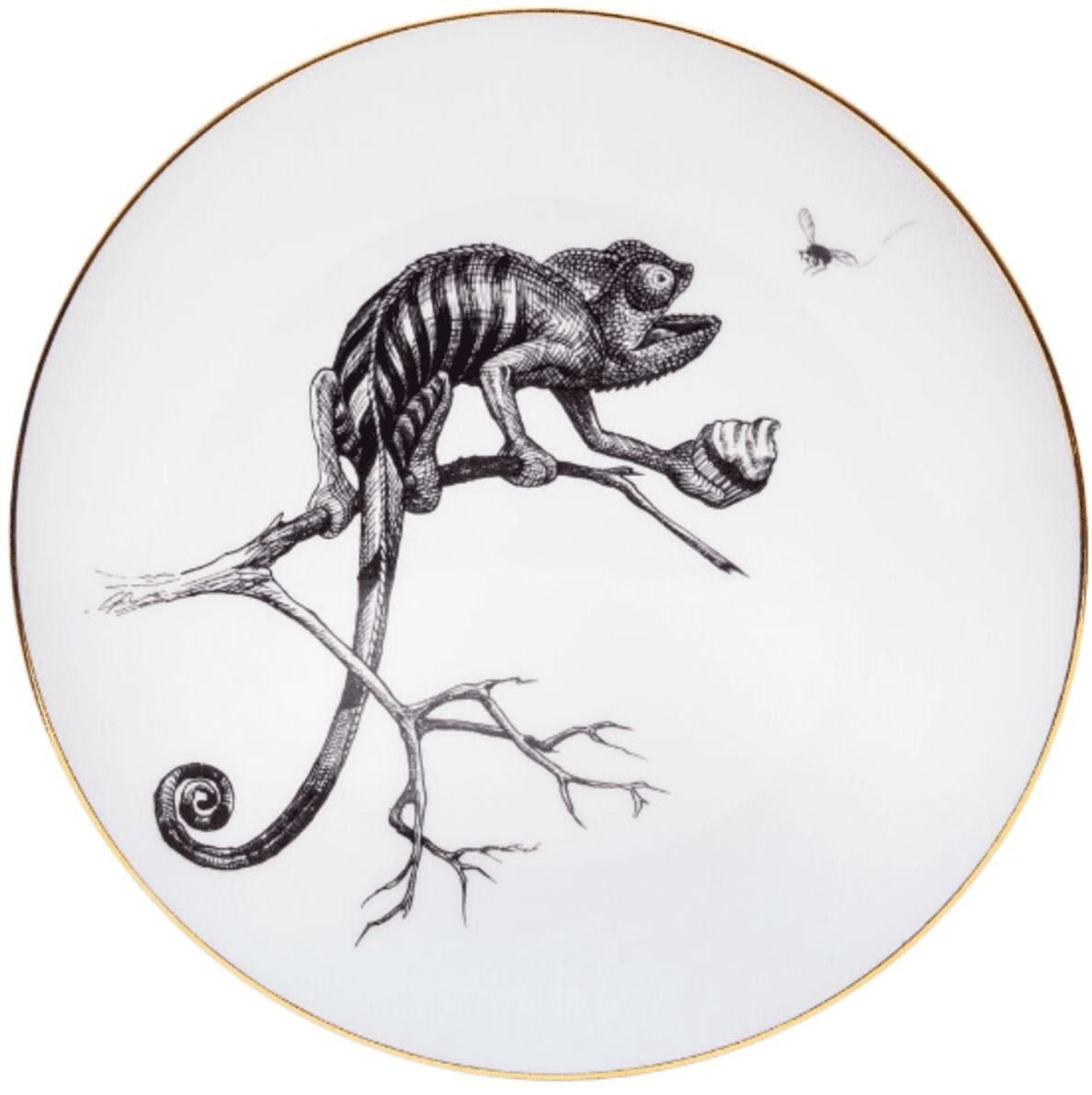 Chameleon Plate-0