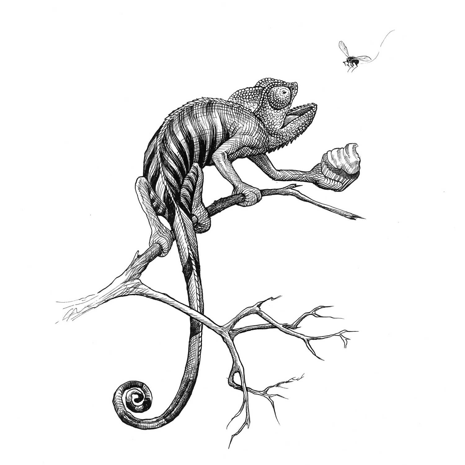 Cheeky Chameleon Clutching a Cherry Cupcake Intricate Ink Print-0