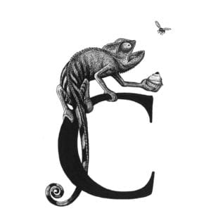 C - Cheeky Chameleon Clutching a Cherry Cupcake Intricate Ink Print-0