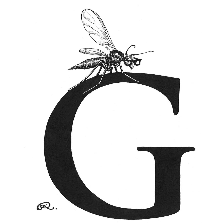 G - Genius Gnat Intricate Ink Print-0