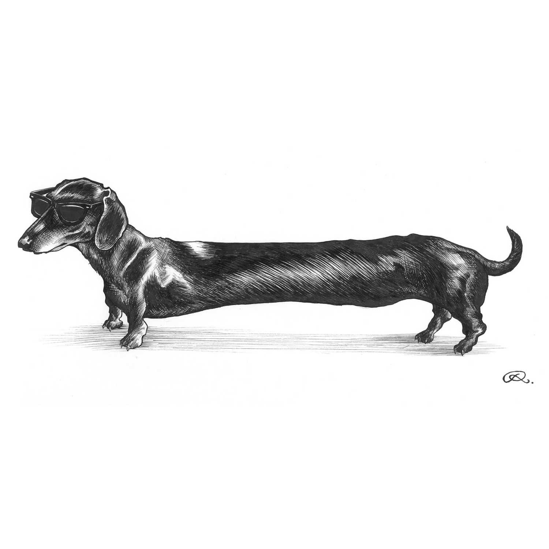 Hot Dog Intricate Ink Print-0