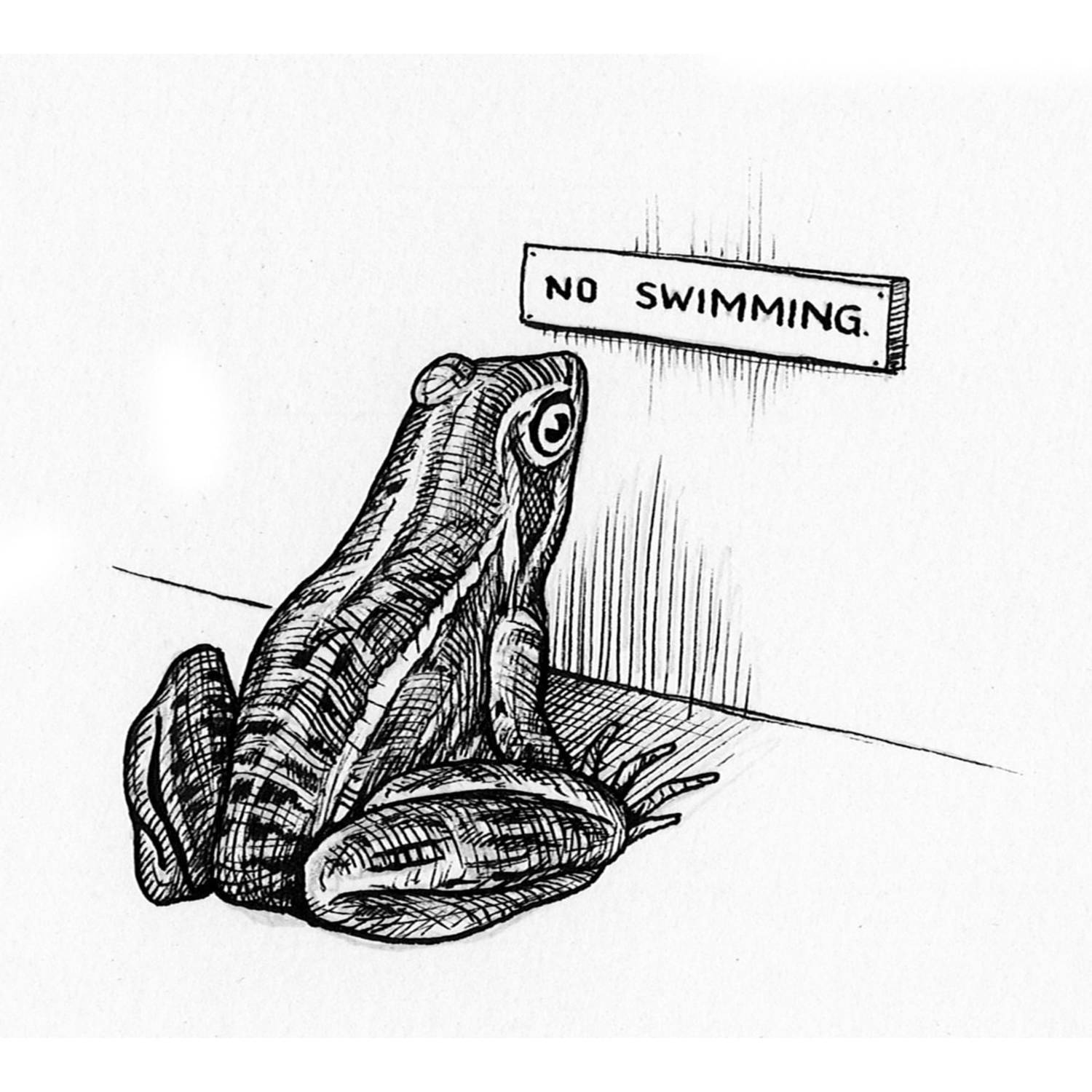 No Swimming Intricate Ink Print-0