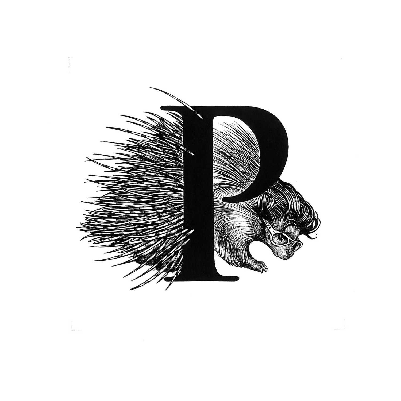 Presley Porcupine Intricate Ink-0