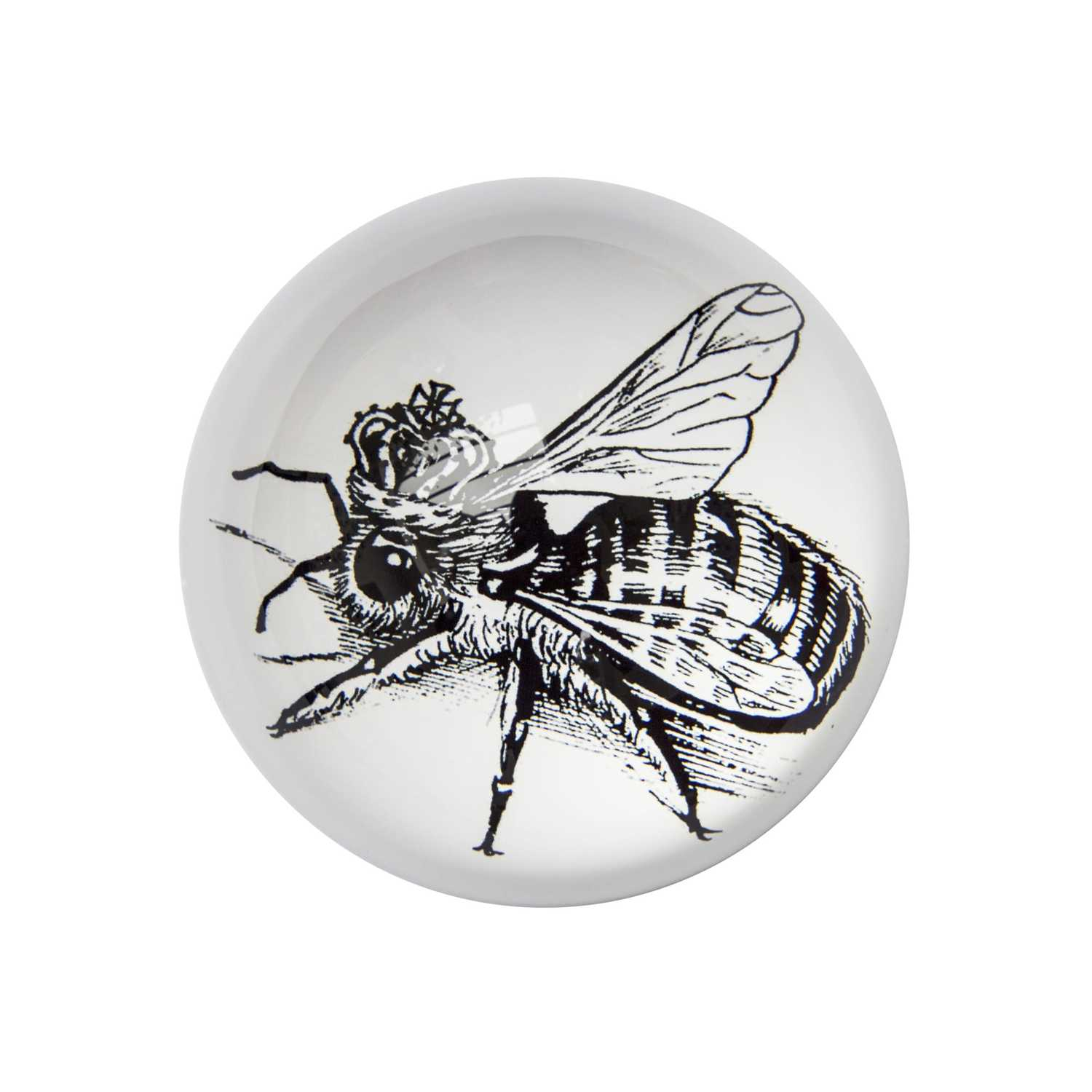 Queen Bee Paperweight Domed -0