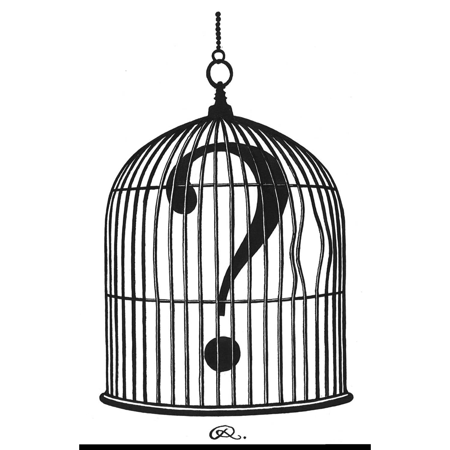 Question Mark Birdcage Intricate Ink A1-0